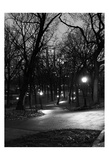 Central Park Night Stroll Prints
