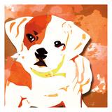 Dog in Color 2 Prints