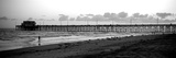 Pier in an Ocean, Newport Pier, Newport Beach, Orange County, California, USA Photographic Print by  Panoramic Images