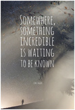 Something Somewhere Incredible Posters