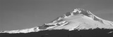 Mt Hood in Winter, Oregon, USA Photographic Print by  Panoramic Images