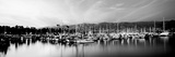 Boats Moored in Harbor at Sunset, Santa Barbara Harbor, Santa Barbara County, California, USA Photographic Print by  Panoramic Images