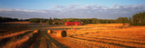 Hay Bales in a Field, Flen, Sodermanland County, Sweden Photographic Print by  Panoramic Images