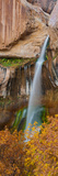 View of the Calf Creek Falls, Grand Staircase-Escalante National Monument, Utah, USA Photographic Print by  Panoramic Images