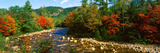 River Flowing Through a Forest, Swift River, White Mountain National Forest, Carroll County Photographic Print by  Panoramic Images