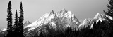 Cathedral Group Grand Teton National Park Wy Photographic Print by  Panoramic Images