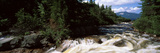 Stream Flowing Through a Forest, Little Niagara Falls, Nesowadnehunk Stream, Baxter State Park Photographic Print by  Panoramic Images