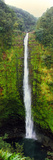 View of a Waterfall, Akaka Falls, Akaka Falls State Park, Hawaii County, Hawaii, USA Photographic Print by  Panoramic Images