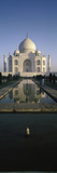 Reflection of a Mausoleum in Water, Taj Mahal, Agra, Uttar Pradesh, India Photographic Print by  Panoramic Images