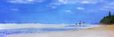 Signboards on the Beach, North Shore, Oahu, Hawaii Islands, Hawaii, USA Photographic Print by  Panoramic Images