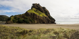 Lion Rock on Piha Beach, Waitakere Ranges Regional Park, Auckland Region, North Island, New Zealand Photographic Print by  Panoramic Images