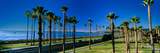 Palm Trees Near the Beach, Santa Barbara, California, USA Photographic Print by  Panoramic Images