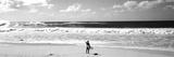 Surfeur sur la plage, North Shore, Oahu, Hawaii, Etats-Unis Reproduction photographique par  Panoramic Images