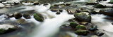 Rocks in a River, Little Pigeon River, Great Smoky Mountains National Park, Tennessee, USA Photographic Print by  Panoramic Images