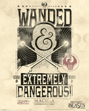 Fantastic Beasts- Wanded & Extremely Dangerous Plakaty