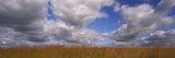 Clouds over a Field, Iowa, USA Photographic Print by  Panoramic Images