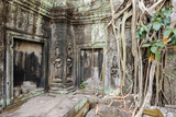 Tree Roots Growing on Ta Prohm Temple (Rajavihara) Ruins, Angkor, UNESCO World Heritage Site Photographic Print by Jason Langley