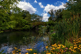 Central Park, New York City, United States of America, North America Photographic Print by Karen Deakin