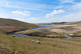 A Landscape View of Elan Valley, Powys, Wales, United Kingdom, Europe Photographic Print by Graham Lawrence