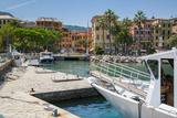 Santa Margherita Ligure Harbour, Genova (Genoa), Liguria, Italy, Europe Photographic Print by Frank Fell