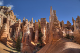 Hoodoos, on the Queens Garden Trail, Bryce Canyon National Park, Utah, United States of America Photographic Print by Richard Maschmeyer