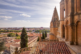 The Cathedral in Salamanca, UNESCO World Heritage Site, Castile and Leon, Spain, Europe Photographic Print by Julian Elliott