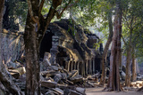 Ta Prohm Temple, Built in the 12th Century by King Jayavarman Vii, Angkor Photographic Print by Nathalie Cuvelier