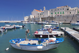 Fishing Boats at the Harbour, Old Town with Cathedral, Giovinazzo, Bari District, Puglia Photographic Print by Markus Lange
