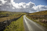 Swaledale, Yorkshire Dales, Yorkshire, England, United Kingdom, Europe Photographic Print by Mark Mawson