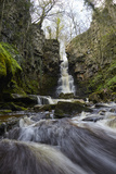 Mill Gill Force Waterfall, Askrigg, Wensleydale, North Yorkshire, Yorkshire Photographic Print by Mark Mawson