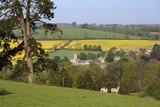 Oilseed Rape Fields and Sheep Above Cotswold Village, Guiting Power, Cotswolds Photographic Print by Stuart Black