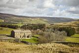 Swaledale, Yorkshire Dales, North Yorkshire, Yorkshire, England, United Kingdom, Europe Photographic Print by Mark Mawson