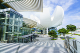The Shoppes at Marina Bay Sands and Artscience Museum, Marina Bay, Singapore, Southeast Asia, Asia Photographic Print by Fraser Hall