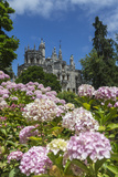 Flowers Frame Old Mystical Buildings of Romanesque Gothic and Renaissance Style Photographic Print by Roberto Moiola