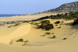 Nam Cuong Dunes, Phan Rang, Ninh Thuan Province, Vietnam, Indochina, Southeast Asia, Asia Photographic Print by Nathalie Cuvelier