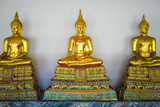 Golden Buddha Statues, Wat Pho (Temple of the Reclining Buddha), Bangkok, Thailand, Southeast Asia Photographic Print by Jason Langley