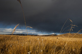 Stormy Sky over Rangelands on the Edge of the Tibetan Plateau in Sichuan Province, China, Asia Photographic Print by Alex Treadway