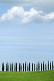Val D'Orcia, UNESCO World Heritage Site, Tuscany, Italy, Europe Fotografisk tryk af Oliviero Olivieri