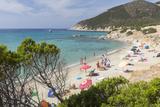 Mediterranean Vegetation Frames the Beach and the Turquoise Sea of Porto Sa Ruxi, Villasimius Photographic Print by Roberto Moiola