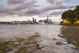 Auckland Skyline at Sunrise, Auckland, North Island, New Zealand, Pacific Photographic Print by Matthew Williams-Ellis