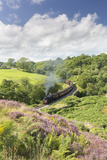 A Steam Locomotive Pulling Carriages Through Darnholme on North Yorkshire Steam Heritage Railway Photographic Print by John Potter