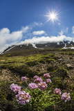 A View of the Stratovolcano Snaefellsjokull, Snaefellsnes National Park, Snaefellsnes Peninsula Photographic Print by Michael Nolan