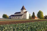 St. Georg Church, Oberzell, UNESCO World Heritage Site, Reichenau Island, Lake Constance Photographic Print by Markus Lange
