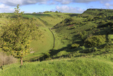 Cressbrook Dale National Nature Reserve in Spring, Elevated View, Peak District National Park Photographic Print by Eleanor Scriven