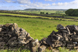 Dry Stone Wall, with View across a Beautiful Typical Country Landscape in Spring Photographic Print by Eleanor Scriven