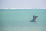 Pirogue, a Traditional Madagascar Sailing Boat, Ifaty Beach, Madagascar, Africa Photographic Print by Matthew Williams-Ellis