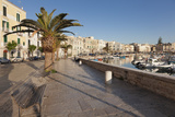 Promenade at the Harbour, Old Town, Trani, Le Murge, Barletta-Andria-Trani District Photographic Print by Markus Lange