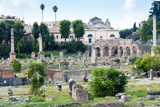 Forum of Nerva, Roman Forum (Foro Romano), UNESCO World Heritage Site, Rome, Lazio, Italy, Europe Photographic Print by Nico Tondini