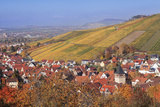 Struempfelbach, Vineyards in Autumn, Rems Murr District, Baden-Wurttemberg, Germany, Europe Photographic Print by Markus Lange