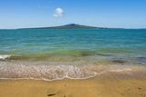 Rangitoto Island, Hauraki Gulf, Auckland, North Island, New Zealand, Pacific Fotografisk trykk av Matthew Williams-Ellis